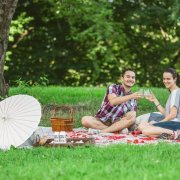 Best locations for picnic proposal in nyc