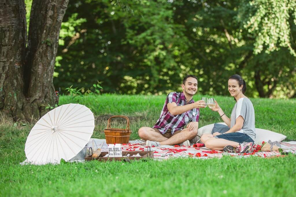 Best places for picnic proposal in nyc