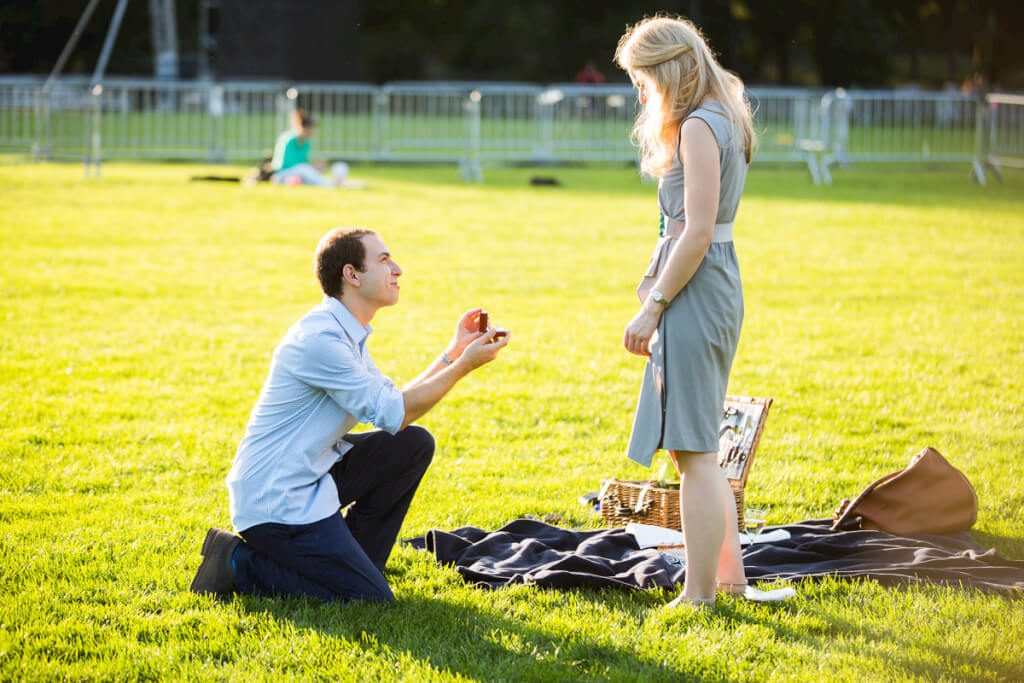 Central Park Marriage Proposal Ideas Proposal Ideas And Planning
