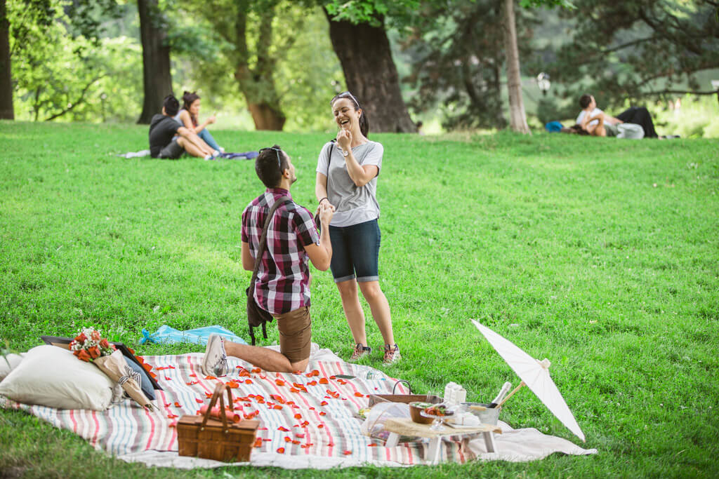 Picnic Proposal In Central Park Proposal Ideas And Planning