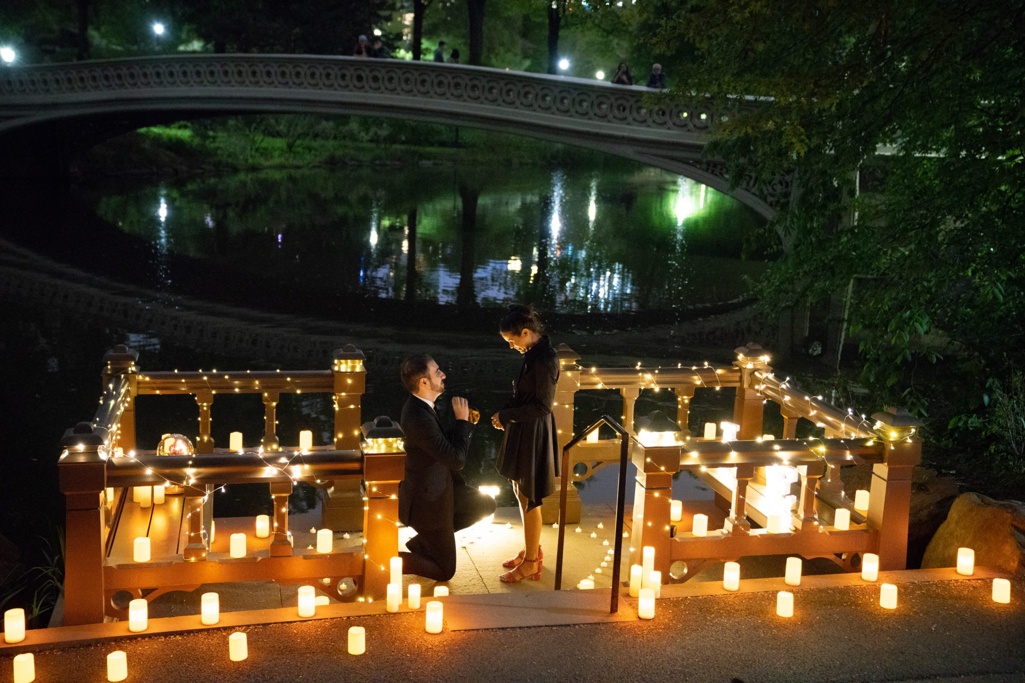 Wedding Proposal Ideas.Enchanted Rose Marriage Proposal Proposal Ideas And Planning