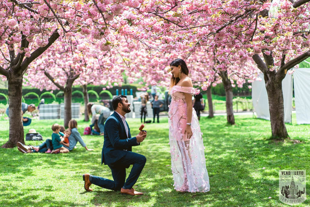 Best Places For A Cherry Blossom Theme Proposal Proposal Ideas And