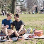 Picnic Proposal ideas in NYC