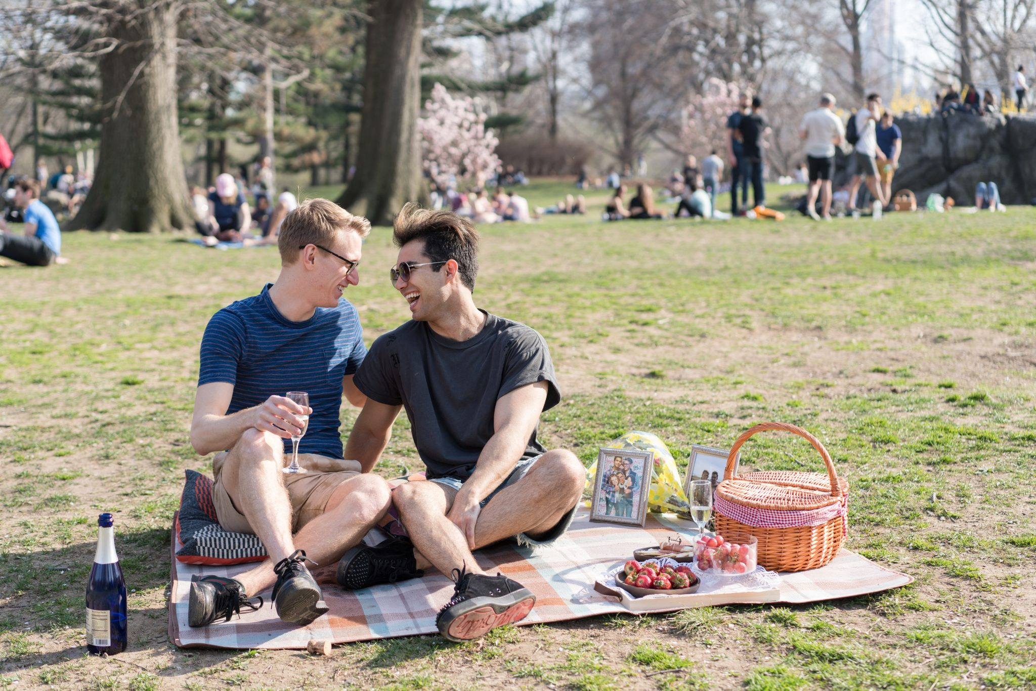 Ideas for a picnic proposal in NYC